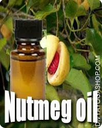 Nutmeg (Myristica Fragrans) oil Nutmeg is broadly utilized in cosmetics and in flavorings in dental lotions, typically together with peppermint, methyl...