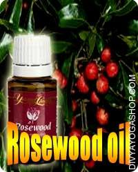 Rose Wood (Aniba Rosaeodora) oil Rosewood oil is a superb alternative for use within the skincare products. Witnessing not a lot healing components...