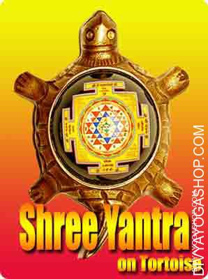 Shree Yantra on Tortoise Shree yantra on Tortoise ​ charged by  tripur shodashi mantra. Shri (Shree) Yantra with Tortoise for Prosperity...