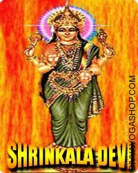 Shrinkala devi puja This Shinkala Yantra and rosary energized by Shinkala Mantra. It gives you good and effective energy for taking decision...