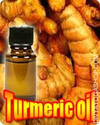 Turmeric (Curcuma longa) oil Curcuma that are of financial in addition to industrial importance. The turmeric root thrives in heat or tropical climates...