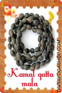 Lotus (Kamal Gatta) Mala This Kamal Gatta Mala (Lotus Seed Mala) charged by Mahalakshmi mantra.  The lotus seed symbolizes...