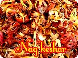 nagkeshar tantra