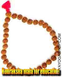 Rudraksha mala for education