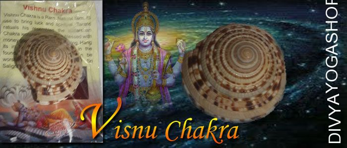 Vishnu chakra for good luck