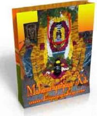 Mahamrtyunjaya Spiritual kit for health