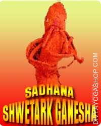 Shwetark ganesha sadhana for obstacles