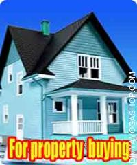 Articles for property buying