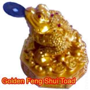 golden-fengshui-toad.jpg