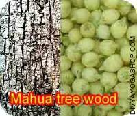 Mohwa tree wood for havan