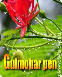 Gulmohar wooden pen for writing yantra