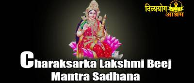 Shri Nagpash Yantra — Divyayogashop spiritual and tantra