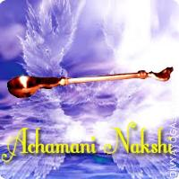 Achamani Spoon