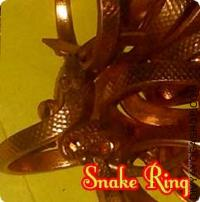 Snake ring for obstacles