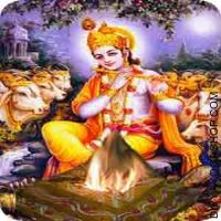 Shree Krishna yagya for success in relationship