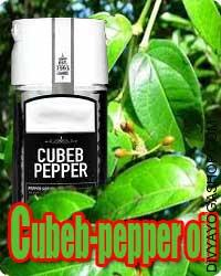 Cubeb (Piper Cubeba) oil