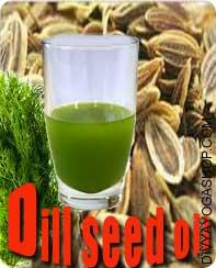 Dill Seed (Anethum Sowa) oil
