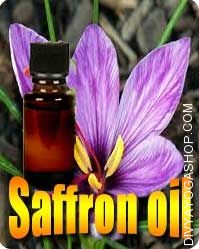 Saffron (Crocus sativus) oil
